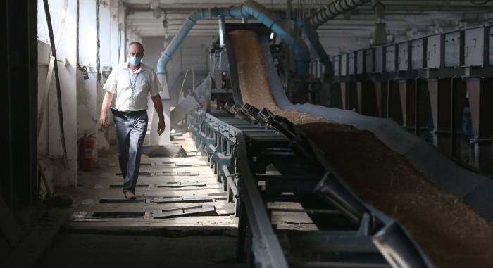 Российские фермеры не боятся экспортных репрессий, ...