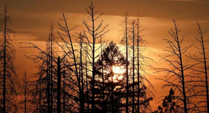 Нефтегазовая отрасль лоббирует свои интересы в SEC